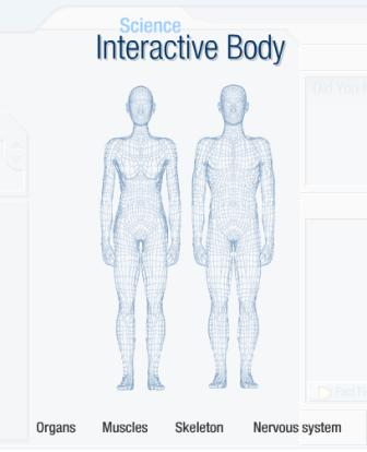 I\'m trying to study the human body. How can I remember all the parts ...